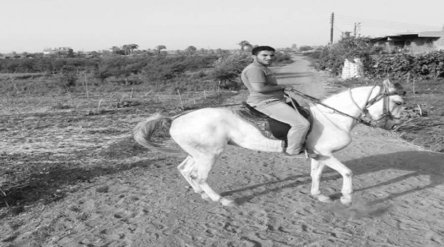 محمد سويفى