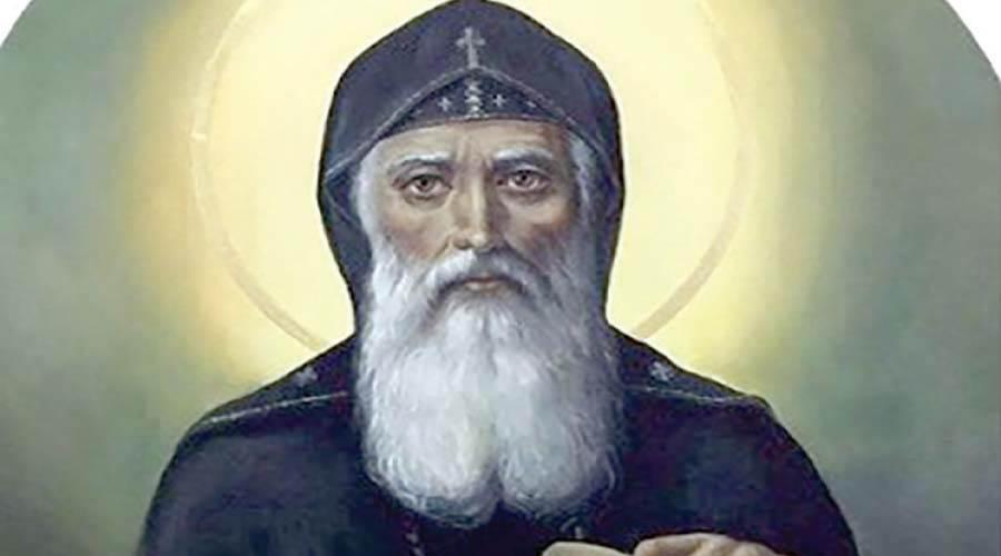 البابا ثيوفيلوس